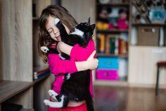 Jurnal de familie - fotografii de familie la tine acasa Family Photography, Cats, Gatos, Family Photos, Family Pics, Cat, Kitty, Family Photo, Kitty Cats