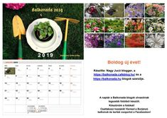 2019-es Balkonada naptár Vincent Van Gogh, Osaka, Orchids, Blog, Gardens, Blogging, Orchid