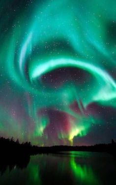 Night Sky Stars, Night Skies, Northen Lights, See The Northern Lights, Beautiful Sky, Galaxy Wallpaper, Lit Wallpaper, Nature Pictures, Belle Photo
