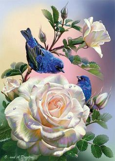 Roses and Blue Birds - Counted Cross Stitch Patterns - Printable Chart PDF Format Needlework Embroidery Crafts DIY DMC color Flower Wallpaper, Art Floral, Bird Art, Beautiful Roses, Blue Bird, Flower Art, Illustrators, Art Drawings, Artwork