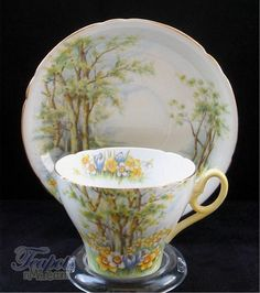 Shelley Daffodil Time Vintage Tea Cup & Saucer