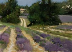 daily painting titled Track through lavender fields - click for enlargement