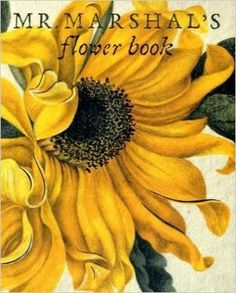 Mr Marshal's Flower Book: Being a Compendium of the Flower Portraits of Alexander Marshal Esq.: As Created for His Magnificent Florilegium: Being a ... As Created for His Magnificent Florilegium: Amazon.co.uk: Alexander Marshal: 9781905686032: Books