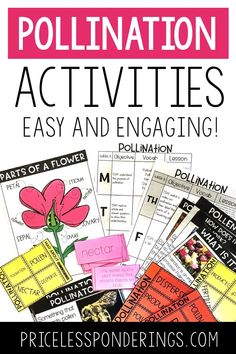 Using Science Interactive Notebooks in your class to teach students about plants and animals couldn't be easier with this jammed pack resource! This product contains 6 weeks of easy to follow lesson plans to help you teach your science curriculum. This notebook bundle is a teacher time saver that in...