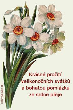 Veselé Velikonoce obrázky, citáty a animace pro Facebook - ObrazkyAnimace.cz Easter, Plants, Facebook, Retro, Hama, Easter Activities, Plant, Retro Illustration, Planets