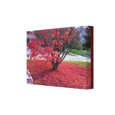 Decorate your walls with Home canvas prints from Zazzle! Choose from thousands of great wrapped canvas to beautify your home or office. Stretched Canvas Prints, Canvas Art Prints, Red Leaves, Wrapped Canvas, Decor Ideas, Painting, Painting Art, Paintings, Painted Canvas