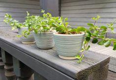 De plantenpotjesop deze paginazijn allemaal met de hand gedraaid op een pottenbakkersschijf. Zezijn afgewerkt met een glazuurlaag en kunnen in de vaatwasser. Je kunt de potjes&nbs…