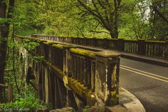 https://flic.kr/p/GjUnCt   Mossy bridge   Historic Latourell Creek Bridge spanning Latourell Creek on the Columbia River Highway.  Built on 1914 is one of eight deck arches built on the Columbia River Highway between 1913 and 1921.  It is so beautiful!