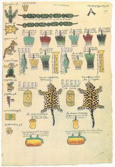 codex-mendoza-aztek-07