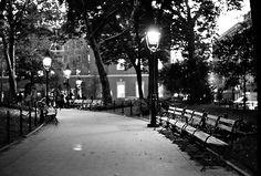 Washington Square Park benches