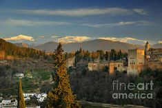 the alhambra,alhambra, architecture,castle,cities,monuments,palace, granada, spain, monuments, sunset, sierra nevada, mountains, citiesthe alhambra, arquitecture, architectural, building, buildings, granada, spain, cities, city, monuments, urban, europe, culture, tourism, cityscape,historical, historic,