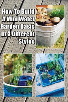 How To Build A Mini Water Garden Oasis In 3 Different Styles.  Look into even more at the photo link