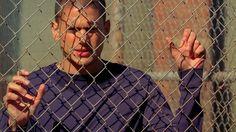 Michael Scofield in Sona - Panama The Best Series Ever, Best Tv Shows, Prison Break 3, Wentworth Miller Prison Break, Sarah Wayne Callies, Dominic Purcell, Tres Belle Photo, Michael Scofield, Freaks And Geeks