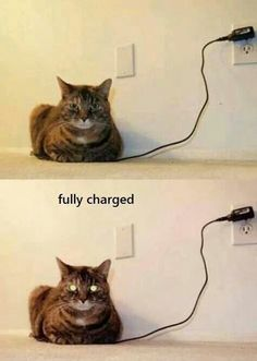 Funny...fully charged!