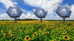 Equipped with an array of multi-junction photovoltaic chips, each of the IBM 'sunflowers' ...
