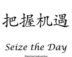 Vinyl Sign  Chinese Symbol  Seize the day by WickedGoodDecor, $8.99