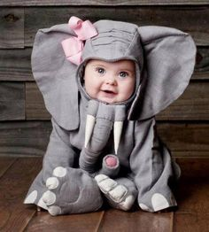 Boyle Nash Pierce Will You Take Pictures Of My Future Child in An Elephant Costume So i Can Frame it And Give it Too You? You Know Cause Your God Child in An Elephant Costume Would Be The Greatest Thing Ever? So Cute Baby, Baby Kind, Cute Kids, Cute Babies, Funny Babies, Halloween Bebes, Baby Halloween Costumes, Funny Halloween, Baby Elephants