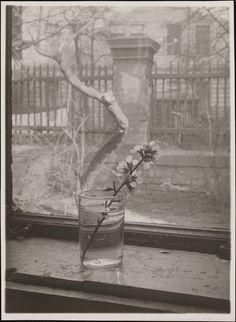 Josef Sudek | From the Window of My Atelier 1940–54