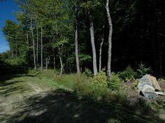 Weston, Vermont Real Estate