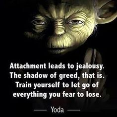 Wise words, that is... #yoda