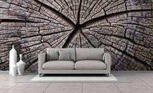 Historia-starego-drewna-tekstury-fototapety-demur