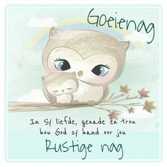 Evening Quotes, Afrikaanse Quotes, Good Night Greetings, Goeie Nag, Good Night Quotes, Special Quotes, Qoutes, Beautiful Pictures, Teddy Bear