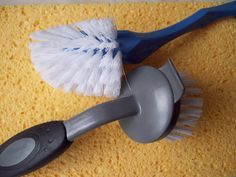 Effective Pest-proofing tips Apartment Cleaning, Bathroom Cleaning Hacks, Toilet Cleaning, Move Out Cleaning Service, Move In Cleaning, Cleaning Services, Cleaning Contractors, Commercial Cleaners, Clean Bathtub