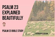 Psalm 23 Bible Study [With Free Psalm 23 PDF] | Hey Creative Sister! | Bloglovin' Christian Women's Ministry, Bible Study Notebook, Bible Love, The Good Shepherd, Prayer Scriptures, Psalm 23, Spiritual Quotes, Read More, Prayers