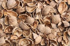 Walnut Shell is the magic ingredient in our Detoxifying Sea Salt Body Scrub. Along with Almond Meal and Sea Salt, it detoxifies and gently buffs away dead skin cells, revealing softer, more radiant skin. Homemade Face Wash, Homemade Skin Care, Sea Salt Body Scrub, Exfoliating Body Scrub, Walnut Shell, Radiant Skin, Natural Solutions, Almond Recipes, Diy Hairstyles