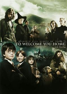Sirius, mcgonagall, remus, fol oeil, luna, ginny, drago, harry, Ron, hermione, dobby et hagrid
