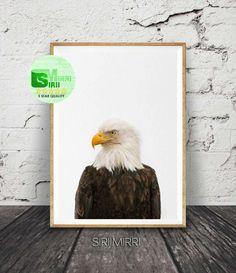 Eagle Print, Bird Print, Eagle Decor, Digital Print, Bird of Prey, Bird Prints, Eagle Bird Photo, Bird Wall Art, Nature Art, American Eagle by SiriiMirri on Etsy