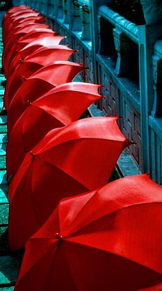 pinterest - ♡ELINE: umbrella Rain Umbrella, Under My Umbrella, Umbrella Photography, Dancing In The Rain, Red Aesthetic, Red White Blue, Color Splash, My Favorite Color, Umbrellas Parasols