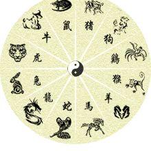 Significato Tatuaggio Segno Zodiacale Cinese  I cinesi credono che l'animale a cui siamo associati influenzi la nostra personalità e il nostro destino.   #tatuaggio #significatotatuaggio #significato #zodiaco #zodiacotatuaggio #zodiacotattoo #zodiacocinese #simbolicinesi #tattoo #wobbajack