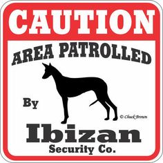 "Our Price $7.95  ID: 201100010864  This ""Caution Area Patrolled by Ibizan Hound"" sign is a great way to let everyone know you have a Ibizan Hound patrolling your property. These signs are screen printed on UV protected Styrene. These 11"" x 11"" signs are weather resistant and suitable for outdoors. Made in the USA  http://www.calendars.com/dbs/Ibizan-Hounds/Ibizan-Hound-Caution-Sign/prod201100010864/?categoryId=cat550010=cat550010#"