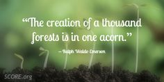 """""""The creation of a thousand forests is in one acorn. Ralph Waldo Emerson, Business Inspiration, Forests, Acorn, Inspirational Quotes, Thoughts, Words, Life Coach Quotes, Woodland Forest"""