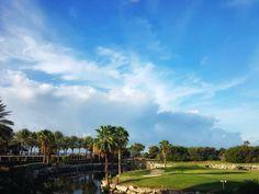 Aruba  #photography #photo #scenic #beautiful #landscape #sunrise #aruba #travel #nature #sea #caribbean #ocean #outdoors #golf #divi #arubatourism