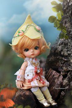 Pumpkin Pixy [S. Shell Crafts, Bjd Dolls, Beautiful Dolls, Pixie, Doll Clothes, Cinderella, Crochet Hats, Pumpkin, Teddy Bear