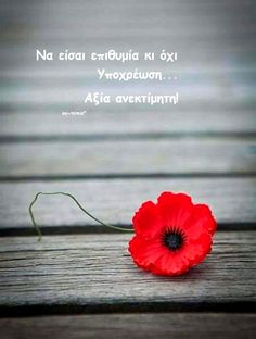 **** Greek Quotes, Meant To Be, Love You, Wisdom, Mood, Beautiful, Sayings, Smileys, Life