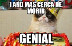 Grumpy cat birthday meme (http://www.memegen.es/meme/opnwjw)