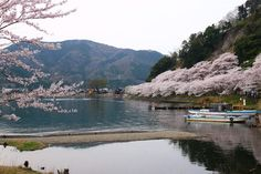 Kaizu-Osaki   Nagahama / Northern Shiga   Japan Travel Guide - Japan Hoppers