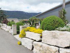 Ausstellungsgarten SOL AG, Grenchen Sidewalk, Plants, Walkways, Plant, Pavement, Curb Appeal, Planting, Planets