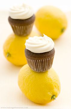 Devil's Mini-Cupcakes with Lemon Cream Cheese Frosting. Adorable little teeny tiny cupcakes #baking #recipe http://thecupcakedailyblog.com/devils-mini-cupcakes-with-lemon-cream-cheese-frosting/