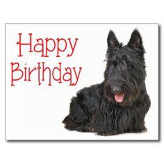 Happy Birthday Scottish Terrier Puppy Postcard  http://www.zazzle.com/happy_birthday_scottish_terrier_puppy_postcard-239237634325728407?rf=238669615131463341