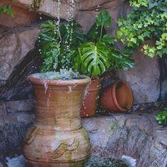 Roger's Gardens (@rogersgardens) • Instagram photos and videos Rogers Gardens, Garden Styles, Garden Inspiration, Planter Pots, Gardening, Display, Photo And Video, Videos, Photos