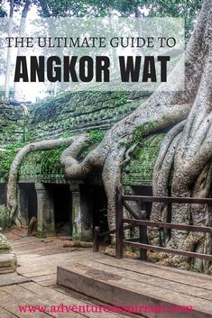 The ultimate guide to Angkor Wat - The ultimate guide to Angkor Wat The Ultimate guide to Angkor Wat in Cambodia. Here's everything you need to know about prices, which temples to see, how to get around and much more. l The Borderless Project Cambodia Travel, Vietnam Travel, Thailand Travel, Asia Travel, Travel Trip, Laos, Places To Travel, Places To See, Travel Destinations