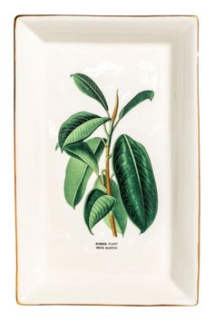 Natural white/ficus. Rectangular porcelain plate with a motif. Gold-colored rim. Size 6 1/4 x 10 in.