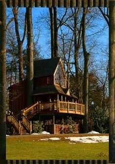 Tree House Kits - nothing better than seeing trees under and coming out of a treehouse!  Awesome tree house