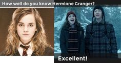 How well do you know Hermione Granger? I got 100% (Excellent!)