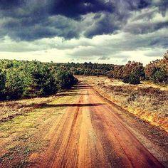 #bursa #turkey #nature #way #sky #forest #village #tree #clouds #photooftheday