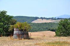 Panorami dalla Fattoria di Statiano sulla Val di Cecina #Pomarance #Pisa #Toscana
